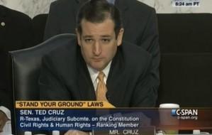 Republican Senator, Ted Cruz of Texas